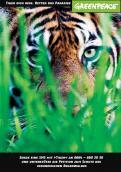 Print-Anzeige  # 341872 für Greenpeace Plakat-Wettbewerb 2014: Sujet für Plakat Kampagne zum Schutz des Sumatra Tigers Wettbewerb