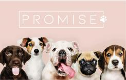 Logo design # 1193378 for promise dog and catfood logo contest