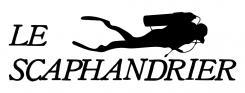 Logo et Identité  n°867512