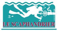 Logo et Identité  n°902654