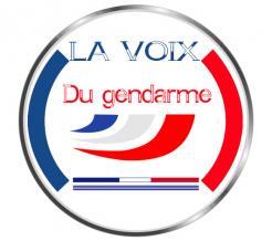 Logo et Identité  n°976086