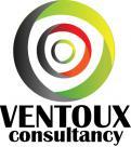 Logo # 176523 voor logo Ventoux Consultancy wedstrijd
