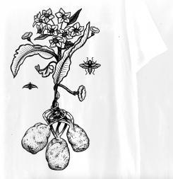 Overig # 594109 voor Design a T-Shirt for our Jacketz Baked Potato Shop Amsterdam  wedstrijd