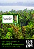 Print ad # 350565 for Greenpeace Poster contest 2014: Campaign for the protection of the Sumatra Tiger contest