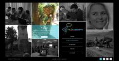 Website design # 372926 voor Internationale consultancy website met veel foto's en toch een professionele uitstraling wedstrijd